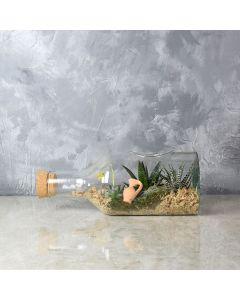 Cliffcrest Succulent Garden in a Bottle, floral gift baskets, gift baskets, succulent gift baskets
