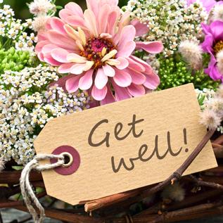 Get well gift baskets Saint Vladimirs